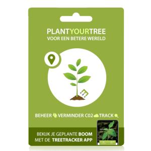 Plant een boom giftcards